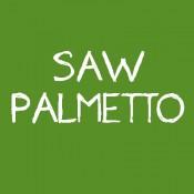 Palmier pitic