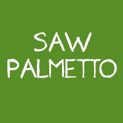 Palmier pitic (Saw palmetto)