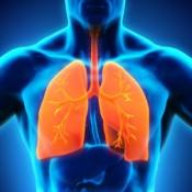 Sistem respirator