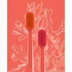 Editie speciala - Coral, Curaprox