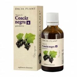 Coacaz Negru Muguri tinctura (50 ml), Dacia Plant