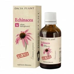 Echinaceea fara alcool tinctura (50 ml), Dacia Plant