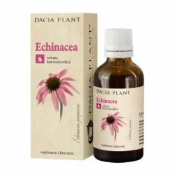 Echinacea tinctura (50 ml), Dacia Plant