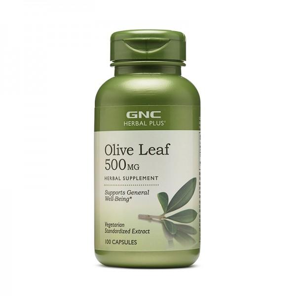 Extract standardizat din frunze de maslin 500 mg (100 capsule), GNC Herbal Plus