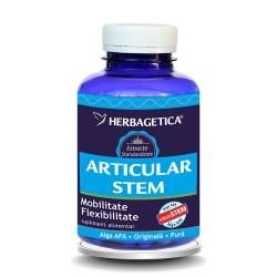 Articular Stem (30 capsule)