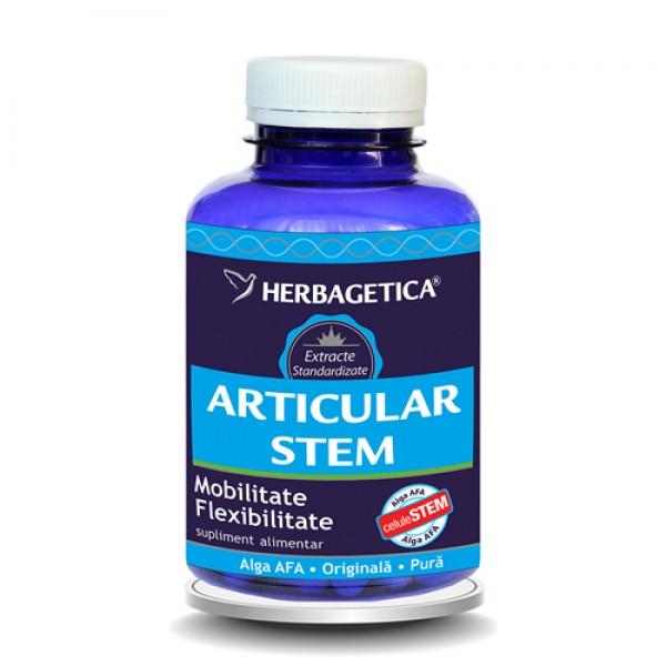 Articular Stem (120 capsule)