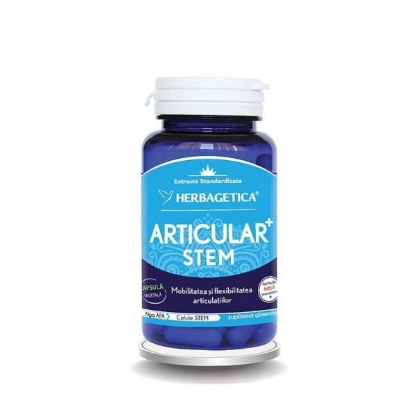 Articular Stem (30 capsule), Herbagetica