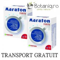 Duo Pack Maraton forte (2 x 20 capsule), Parapharm