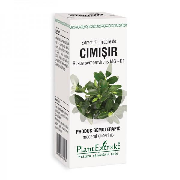 Extract din mladite de cimisir - Buxus Sempervirens MG=D1 (50 ml), Plantextrakt