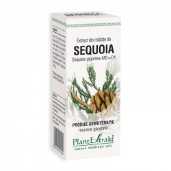 Extract din mladite de sequoia - Sequoia Gigantea MG=D1 (50 ml), Plantextrakt