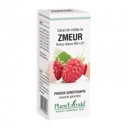 Extract din mladite de zmeur - Rubus Idaeus (50 ml), Plantextrakt