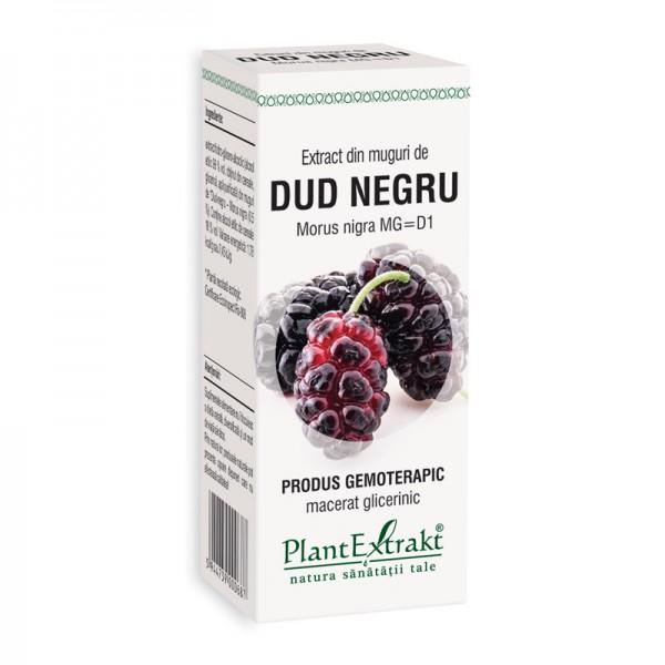 Extract din muguri de dud negru - Morus Nigra MG=D1 (50 ml), Plantextrakt