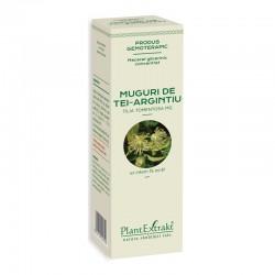 Macerat glicerinic concentrat din muguri de tei argintiu - Tilia Tomentosa (15ml), Plantextrakt