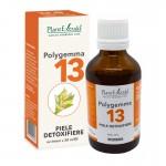 Polygemma 13 - Piele, detoxifiere (50 ml), Plantextrakt
