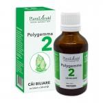 Polygemma 2 - Cai biliare (50 ml), Plantextrakt