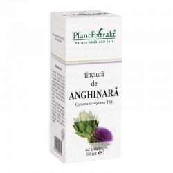 Tinctura de anghinara - Cynara Scolymus TM (50 ml), Plantextrakt