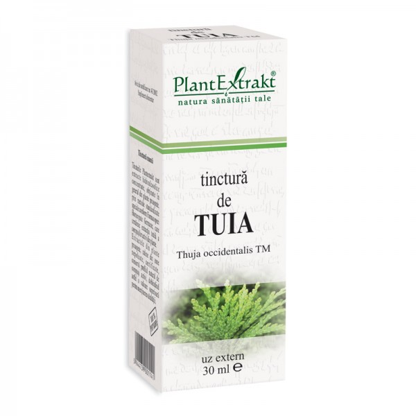 Tinctura de tuia - Thuja Occidentalis TM (50 ml), Plantextrakt
