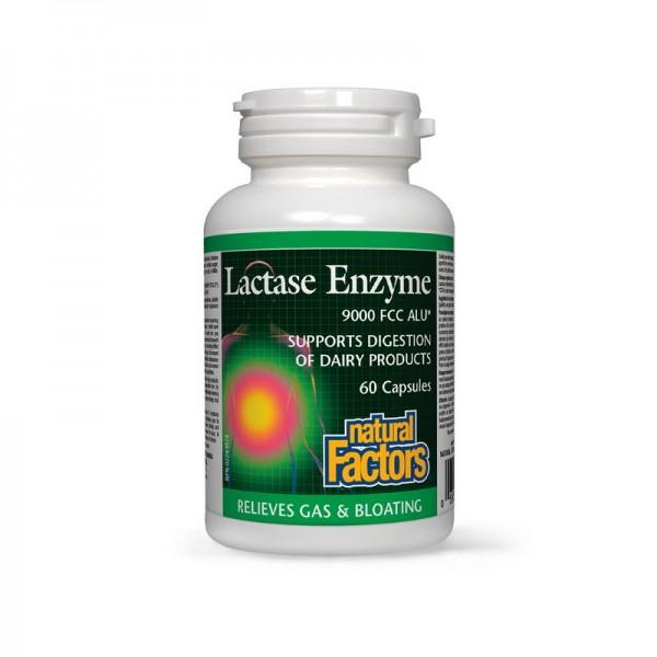 Enzime de lactaza (60 capsule), Natural Factors