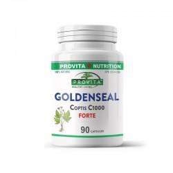 Goldenseal Coptis C1000 Forte (90 capsule), Provita Nutrition