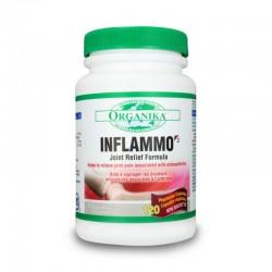 Inflammo (120 capsule), Organika Canada