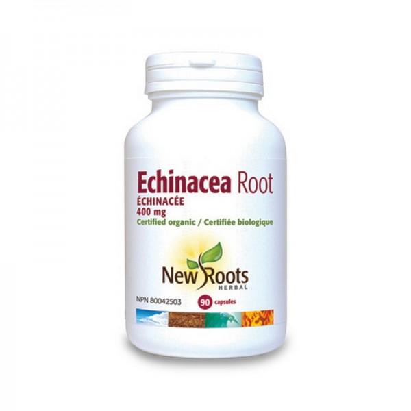 Radacina de Echinacea Forte 400 mg (90 capsule), New Roots