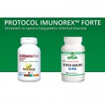 Protocol Imunorex Forte pentru sistemul imunitar de 30 de zile, Provita Nutrition