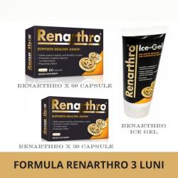 Formula Completa  Renarthro 3 Luni (Renarthro x 60 Cps, Ice Gel, Renarthro x 30 Cps), Renarthro