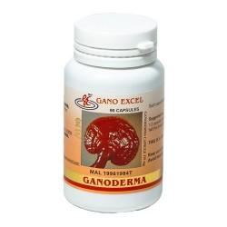 Ganoderma (90 capsule)