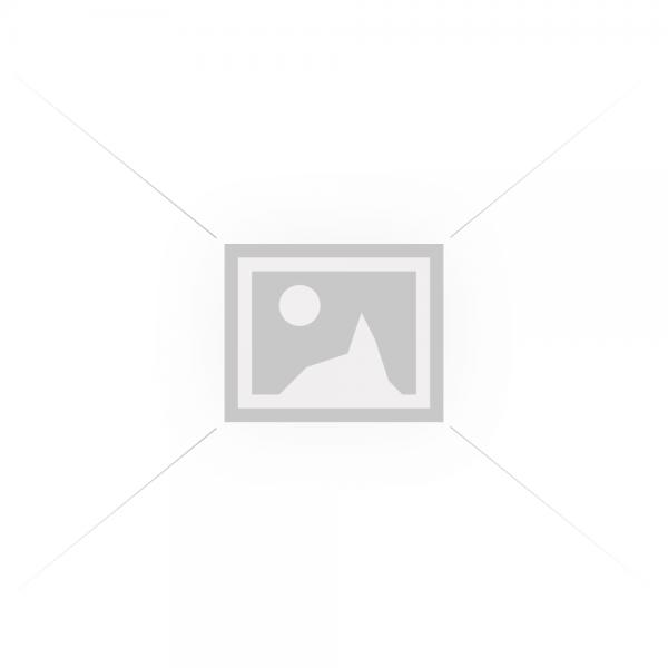 Shiitake pudra ecologica (125 gr), RawBoost
